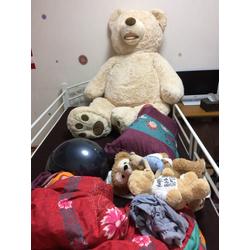 巨大な熊さんの画像1